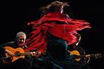 Arte Flamenco vu par Pascal Bats et Nicolas Le Lièvre