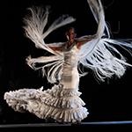 Arte Flamenco 2014 du 30 juin au 5 juillet