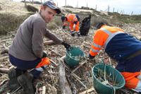 Nettoyage diversifié du littoral landais