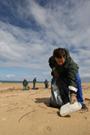 Nettoyage manuel des plages