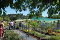 Floriculture aux Jardins de Nonères