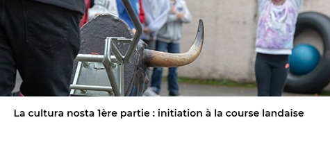 Article Xlandes-info.fr