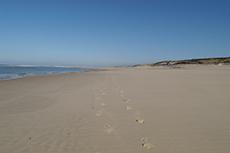 Le littoral landais