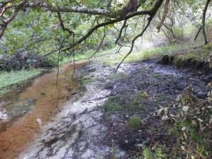 Fontaine Clémens à Herm et Gourbera