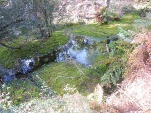 Fontaine Magescq à Herm et Gourbera