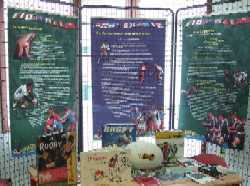 Exposition le Rugby