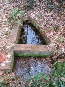 Fontaine Sainte-Quitterie à Sainte Foy