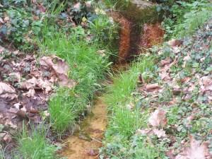 Fontaine de la Graboche à Estibeaux