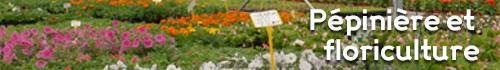 Pépinière et floriculture - Jardins de Nonères
