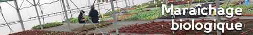 Maraîchage biologique - Jardins de Nonères