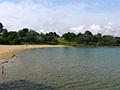 Webcam - le lac d Arjuzanx