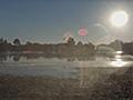 Webcam réserve naturelle d&aposArjuzanx